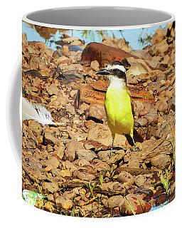 Great Kiskadee In Nature Coffee Mug