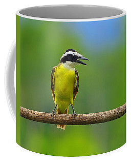 Great Kiskadee Coffee Mug