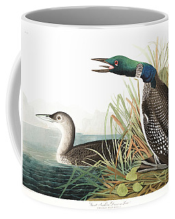 Great Norther Diver Or Loon Coffee Mug
