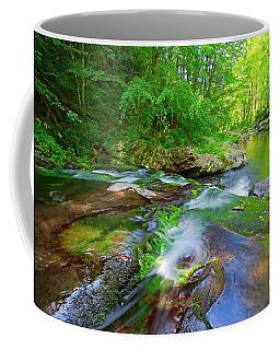 Great Smoky Mountains National Park Scenic Waterfall Landscape Coffee Mug
