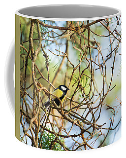 Great Tit Male Waiting For The Spring To Come Coffee Mug