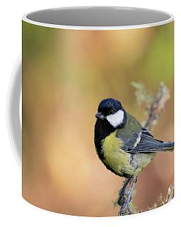 Great Tit - Parus Major Coffee Mug