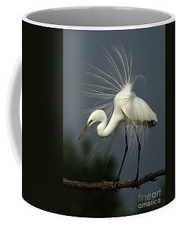 Majestic Great White Egret High Island Texas Coffee Mug