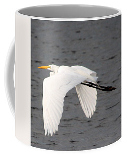 Great White Egret In Flight Coffee Mug by Laurel Talabere