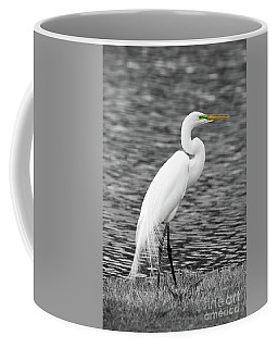 Great White Egret Coffee Mug
