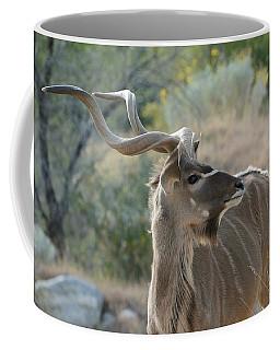 Coffee Mug featuring the photograph Greater Kudu 4 by Fraida Gutovich