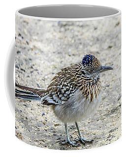 Greater Roadrunner Brief Pause Coffee Mug