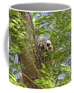 Greathornedowlchick1 Coffee Mug