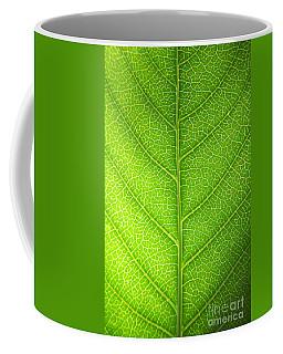 Green Botany -  Part 3 Of 3 Coffee Mug