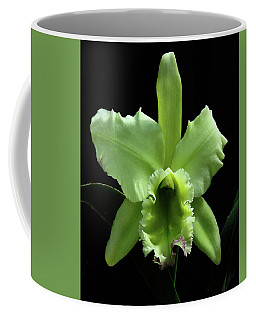Green Cattleya Coffee Mug by Rosalie Scanlon