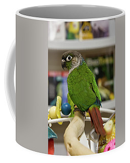 Green Cheek Conure Coffee Mug