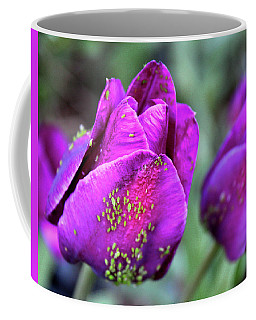 Coffee Mug featuring the photograph Aphids On Purple Tulips by Melinda Blackman