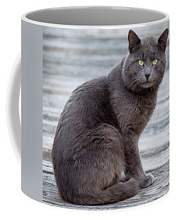 Green Eye Stare Cat Square Coffee Mug by Terry DeLuco