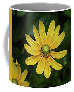 Green Eyed Daisy Coffee Mug