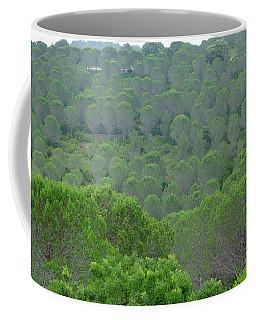 Green Fans Coffee Mug