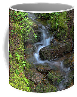 Coffee Mug featuring the photograph Green Flowing Stream by James BO Insogna