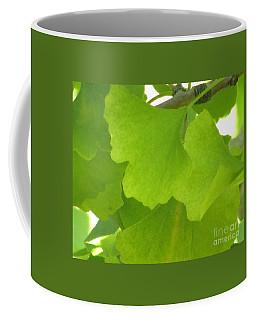 Green Ginkgo Coffee Mug by Kim Tran