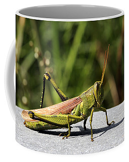 Green Grasshopper Coffee Mug