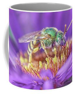 Green Halactid Bee On Purple Aster Coffee Mug