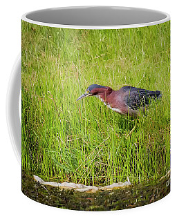 Coffee Mug featuring the photograph Green Heron On The Hunt by Ricky L Jones