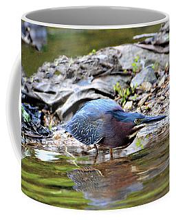 Green Heron On The Shore Coffee Mug