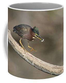 Green Heron With Fish Coffee Mug