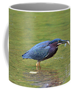 Green Heron With Fish Coffee Mug by Kathy Kelly