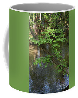 Coffee Mug featuring the photograph Green Is For Spring by Skip Willits