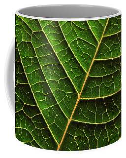 Green Leaf Macro Coffee Mug