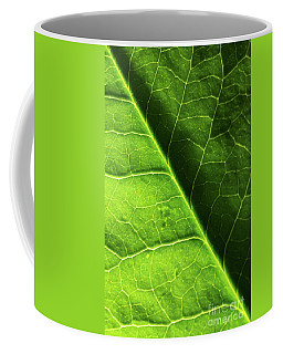 Coffee Mug featuring the photograph Green Leaf Veins by Ana V Ramirez