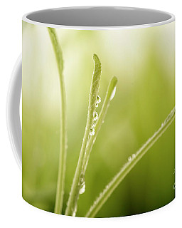 Green Plant With Water Drops Coffee Mug