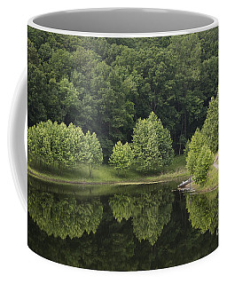 Green Reflections Coffee Mug by Andrea Silies