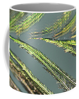 Green Reflections Coffee Mug
