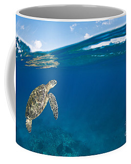 Green Sea Turtle At Surface Coffee Mug