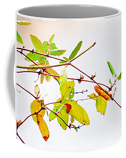 Green Twigs And Leaves Coffee Mug by Craig Walters