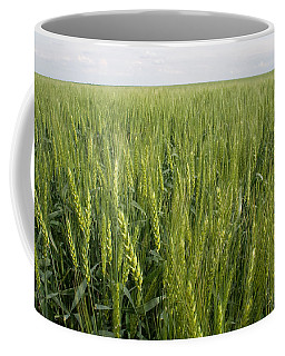 Coffee Mug featuring the photograph Green Wheat by Dylan Punke