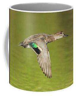 Green-winged Teal 6320-100217-2cr Coffee Mug