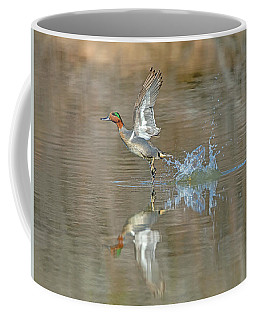 Green-winged Teal Duck Coffee Mug
