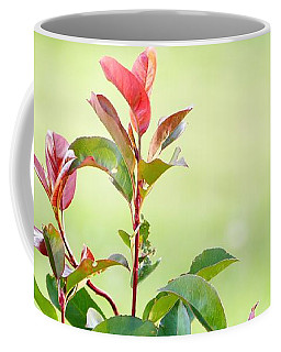 Coffee Mug featuring the photograph Greenery And Red by Ivana Westin