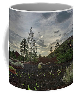 Coffee Mug featuring the photograph Greet The Day by Gaelyn Olmsted
