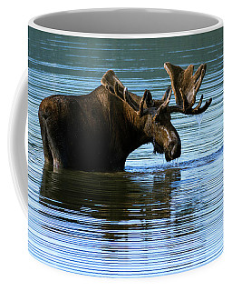 Greeting Coffee Mugs