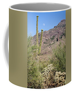 Coffee Mug featuring the photograph Greeting The Night by Phyllis Denton