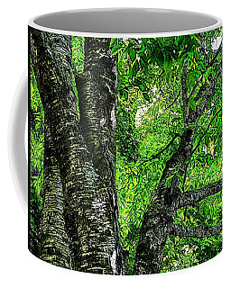 Coffee Mug featuring the photograph Grey Birch by Joy Nichols