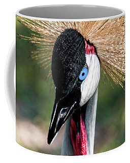 Grey Crowned Crane Gulf Shores Al 2041 Coffee Mug