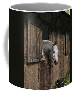 Grey Horse In The Stable - Waiting For Dinner Coffee Mug