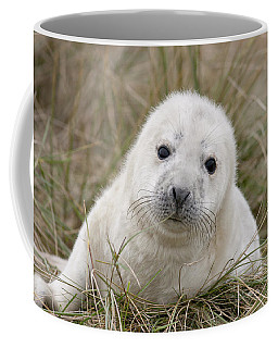 Grey Seal Pup Coffee Mug