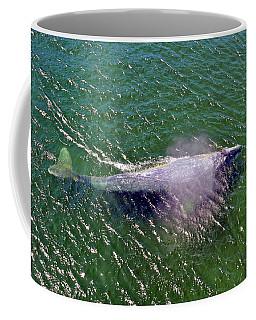 Grey Whale Coffee Mug