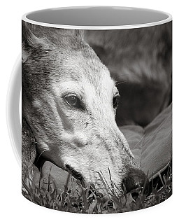 Coffee Mug featuring the photograph Greyful by Angela Rath