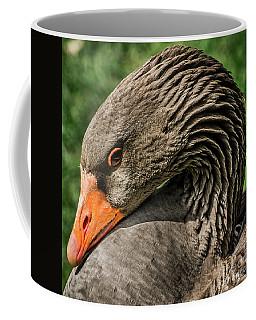 Greylag Goose Portrait  Coffee Mug by Gary Whitton