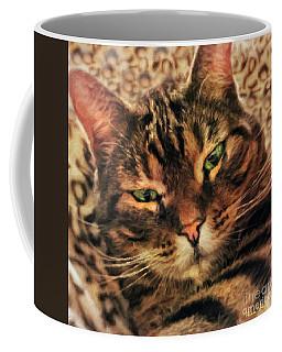 Griffin My Bengal Cat Coffee Mug